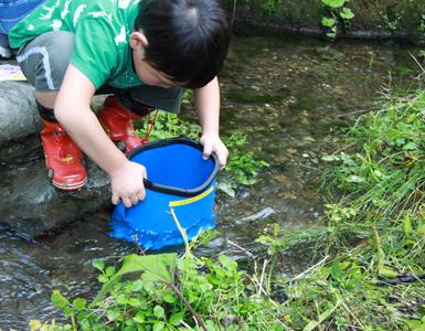 奥山、里山、里川の再生プロジェクト