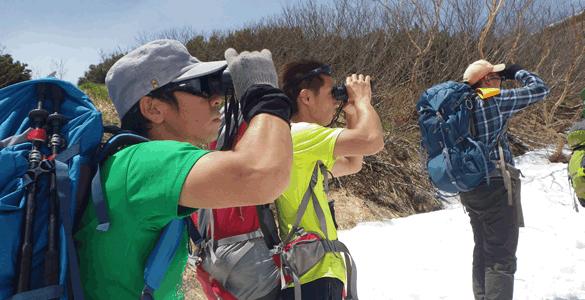 火打山ライチョウ個体群生態調査
