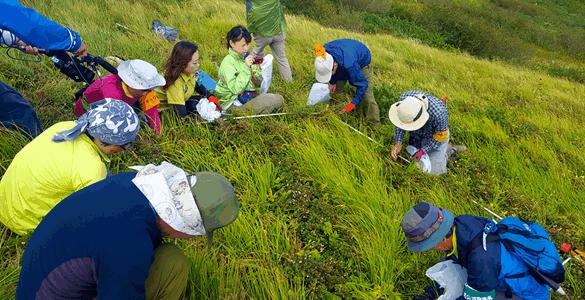 環境省と妙高市の共同による火打山山頂周辺の植生調査